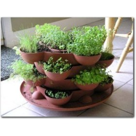 indoor-survival-gardening