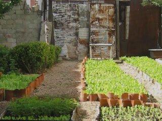 survival-garden