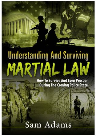Survive Martial Law
