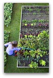 survival_gardening_1